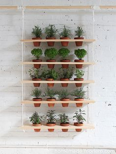 Very simple to make but stunning to look at, this hanging herb garden would look great on a sunny wall outside a kitchen, or even indoors if there is enough light. - See more at: http://www.home-dzine.co.za/garden/garden-hanging-herbs.html#sthash.CxBaF9cn.dpuf