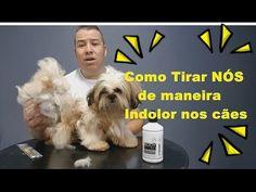 (1) Como Retirar nós dos cães ( Banho desembaraçante Pet smack) BY MIGUEL TOMÉ - YouTube Pet Vet, Pet Dogs, Diy Pet, Pet Health, Dog Grooming, Pet Care, Youtube, Pet Shop, Animals