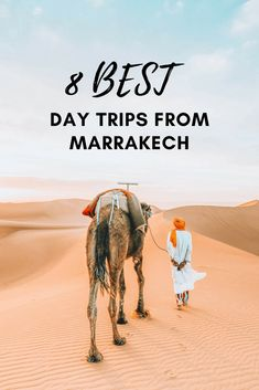 8 Amazing Day Trips from Marrakech No visit to Morocco is complete with a day trip from Marrakech to explore this beautiful country. Here are our favorite easy daytrips from Marrakech to get away from the bustle and hustle of the medina. Riads In Marrakech, Marrakech Travel, Morocco Travel, Africa Travel, Marrakech Morocco, Italy Travel, Visit Marrakech, Egypt Travel, Paris Travel