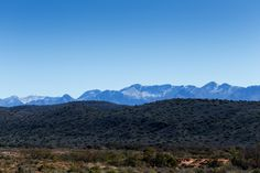 Brown to green to almost silver mountain range in De Rust  The Landscape is Brown to green to almost silver with The Swartberg Mountain Range cover in Snow