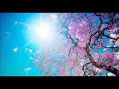 Mendelssohn -Spring Song Enjoy!~ Disclaimer: If there is a problem with either the music or wallpaper used in this video, please inbox me and I will remove i...