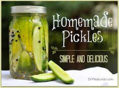 Learn to pickle cucumbers the simple way so you can make the best dill refrigerator pickles you've ever had. I promise they'll be a big hit with everyone!