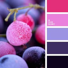 Delicate berry shades contrasting look, but organically. A smooth transition from dark blue to pink ensures that cold blue with pink midtone. The palette will give elegance and depth of the interior living room or bedroom. Soft combination of contrasting colors provide comfort and allow to fully relax.