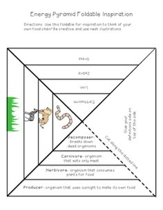 Energy Pyramid Foldable from kprice1022 on TeachersNotebook.com (2 pages)