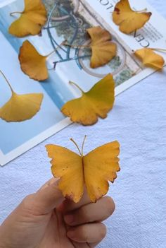 Halloween Crafts For Kids, Christmas Crafts For Kids, Diy Crafts For Kids, Christmas Diy, Autumn Crafts, Nature Crafts, Autumn Leaves Craft, Diy Butterfly, Fall Diy