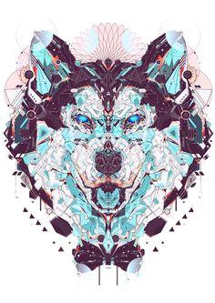husky by Yoaz