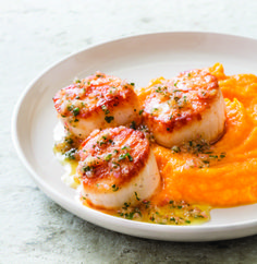Seared Scallops with Lemon and Vodka | Recipe | Seared Scallops ...