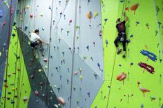 Spooky Nook Sports • Insider Tip: A valid college ID will get you half-off day passes and equipment rentals at this indoor climbing center and gymnasium. Great arcade too!