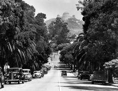 Looking up the palm tree-lined residential area of Normandie and Franklin Avenue. The Griffith Park Observatory can be seen in the far background in the Hollywood Hills. - Los Angeles - 1939.