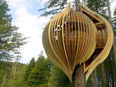 Na Nova Zelândia, pendurado numa sequoia de 40 metros de altura, há um pequeno restaurante de 18 lugares feito de madeira reflorestada e laminada.