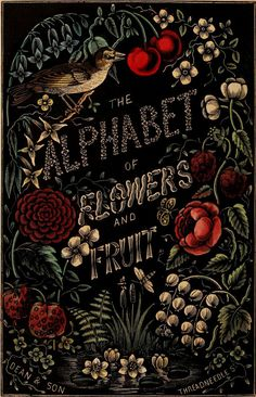 The Alphabet of Flowers and Fruit (author unknown). Children's literature published in London by Dean and Son, 1856