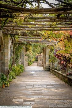 Vines in the garden, Hever Castle, Kent, England Landscape Design, Garden Design, Garden Archway, Kent England, Italian Garden, Garden Park, Garden Fountains, Adventure Is Out There, Summer Garden
