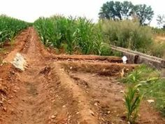 Irrigation in Ancient Mesopotamia