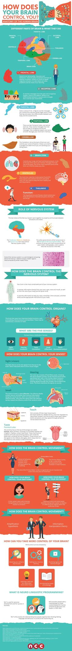 How Does Your Brain Control You? #infographic #Brain #Health
