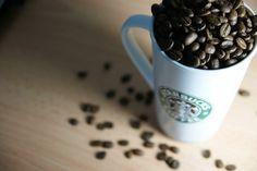 Coffee / Starbucks