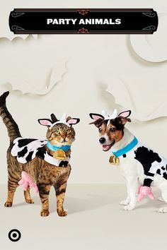 Get your fur-BFFs in on the fun this Halloween with utterly cute costumes. These cow costumes for cats and dogs come in sizes for pets big and small, so you can get all your furry friends in on the fun. Cow Costumes, Pet Halloween Costumes, Cute Baby Animals, Animals And Pets, Funny Animals, Animal Memes, I Love Cats, Cute Cats, Costume Chien