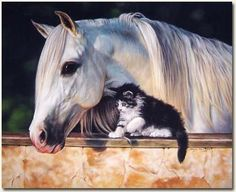 Pint Size Friend - click to view larger
