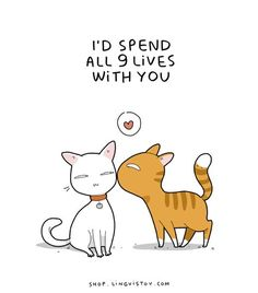 😻 my little cat lady heart Crazy Cat Lady, Crazy Cats, Animals And Pets, Cute Animals, Cat Comics, Cat Dog, All About Cats, Cat Quotes, Cat Memes