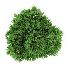 354 Mejores Imágenes De Plantas Render Landscaping Plants Y