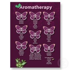 Aromatherapy Chart in Burgundy Post Cards