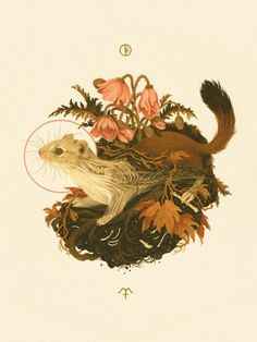"""""""Mabon"""", in which stoat becomes ghost ermine,...   Teagan White"""