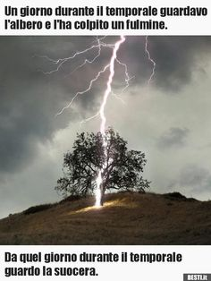 lighening itting a tree images Mother Earth, Mother Nature, Lightning Photography, Cool Illusions, Eye Of The Storm, Tree Images, Life Symbol, Lightning Strikes, Thunderstorms