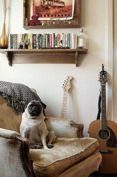 These Dogs Love Interior Design #nousDECOR