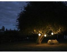 Outdoor lighting has many uses. It can illuminate a pool, safely see you to and from your car at night, and light up your yard in a way that you never thought possible. Landscape Lighting, Outdoor Lighting, Lighting Ideas, Backyard Lighting, Outdoor Decorative Lights, Dream Dates, Fresco, Mood Light, Night Light