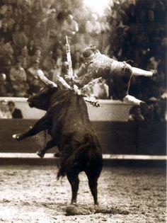Forcado Pamplona, Historical Photos, Portuguese, Taurus, Portugal, Moose Art, Blood, Fishing, History