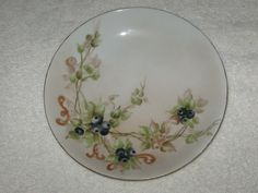 Antique/Vintage Hand Painted China Plate - Limoge France - Haviland - Berries #2 #LimogeFrance