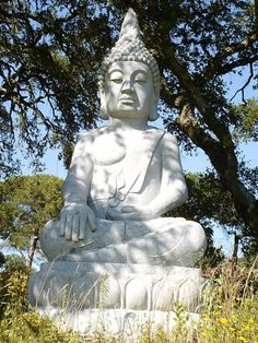 Buddha Eden park - Portugal