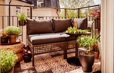 Balcon avec fauteuil d'extérieur garni de coussins, entouré d'un grand nombre de plantes vertes dans des cache-pots.