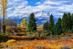 Image result for tetons autumn