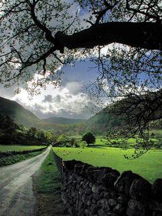 Stone Fence, Cumbria, England - Reiver country.