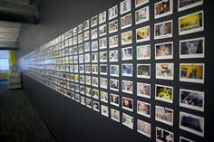 Magnetic wall: Did you know that you can turn any wall magnetic by painting it with magnetic primer? Communications company M Booth did this with one of its walls, then sent out employees onto the streets of NYC with Fujifilm Instax cameras. The result is this impressive wall displaying 800 instant photos!