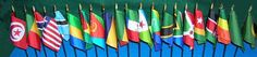 African Flag Set - 21 African Country Flags No Stands included .. OM