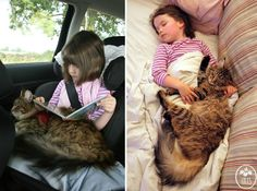 BoredPanda ... Heartwarming Friendship Of A 5-Year-Old Girl With Autism And Her Therapy Cat