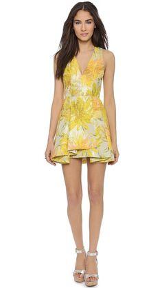 alice + olivia Tanner V Neck Flare Dress