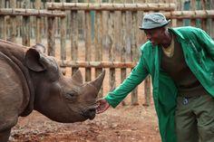 Solio with her keeper Amos @ The David Sheldrick Wildlife Trust