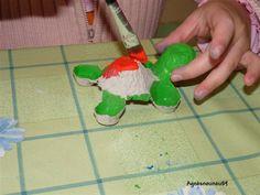 Schildpad van eierdoos / Tortues