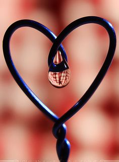 Blue Heart by SheilaBrinson on DeviantArt Heart In Nature, I Love Heart, With All My Heart, Heart Art, Yakushima, Dew Drops, Follow Your Heart, Grateful Heart, Photo Heart