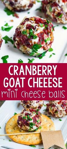 Mini Candied Pecan Cranberry Goat Cheese Balls Quick, easy, and totally delicious, these Mini Candied Pecan Cranberry Goat Cheese Balls make a tasty party appetizer for fancy yet fuss-free entertaining! Ready in 15 minutes. Party Finger Foods, Finger Food Appetizers, Appetizers For Party, Appetizer Recipes, Dinner Recipes, Party Snacks, Cold Appetizers, Slow Cooker Recipes, Cooking Recipes