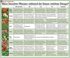 Wann düngen? Welche Pflanze braucht wann wieviel Dünger? Unser Dünger-Kalender erklärt, wie und wann Sie Pflanzen am besten düngen sollten