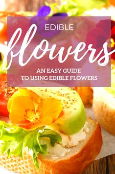 If you've ever considered adding flowers to your cooking, this article is a must read! Good Food, Yummy Food, Edible Flowers, Amazing Recipes, Gardening, Bright, Colour, Cooking, Breakfast