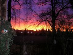 in The Morning From My Front Yard Vancouver, Yard, Sky, Celestial, Sunset, Outdoor, Outdoors, Heaven, Garten
