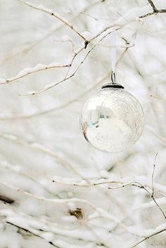 ❥ mercury glass and snow covered branches