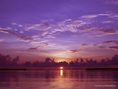 Miracles of nature happen every day in Maldives