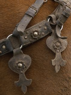pete-oxford-detail-of-ornate-leather-horse-tack-on-a-horse-in-the-andes-mountains-ecuador.jpg (366×488)