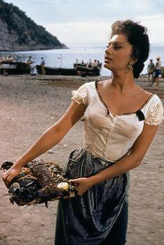 Sophia Loren c Hollywood Stars, Classic Hollywood, Old Hollywood, Hollywood Divas, Joan Collins, Classic Actresses, Hollywood Actresses, Beautiful Wife, Most Beautiful Women