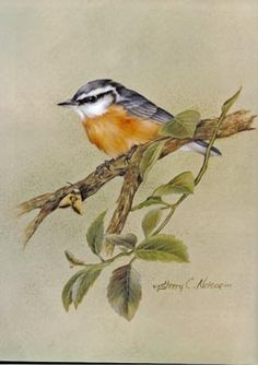 Sherry Nelson Decorative Painter | ... painting songbirds with sherry c nelson by sherry c nelson 144pp full